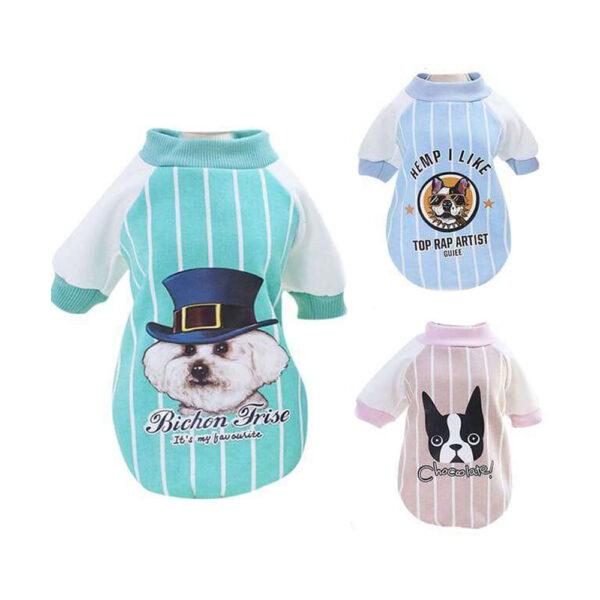 Bluza bomberka dla psa gentelman trzy kolory