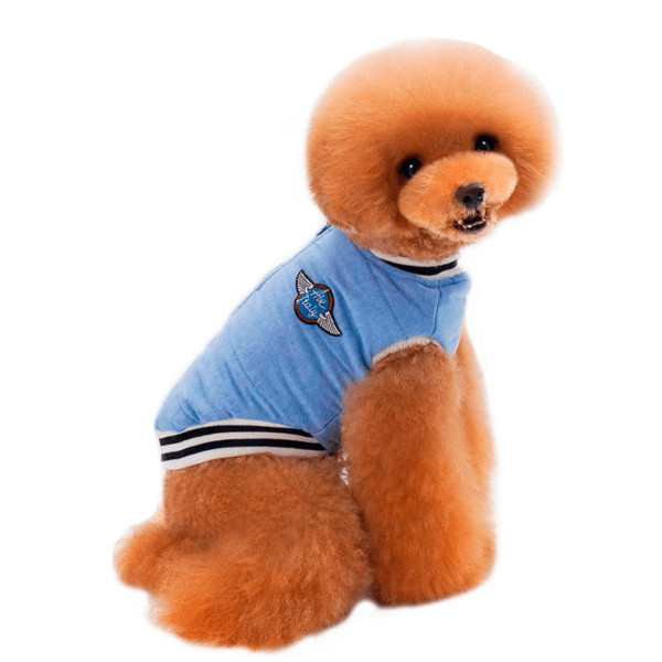 Kurtka bejsbolówka dla psa, polarek wewnątrz, zapinana na suwak na plecach, kolor niebieski
