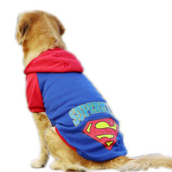 Bluza dla dużego psa golden retriever superman niebieska grzbiet