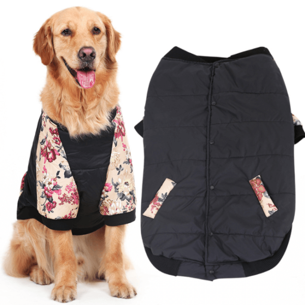 Bluza dla psa Golden Retriever czarna w kwiaty na psie