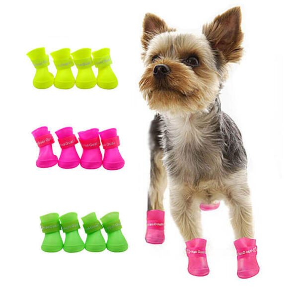 Silikonowe buty dla psa Silboot kolory york