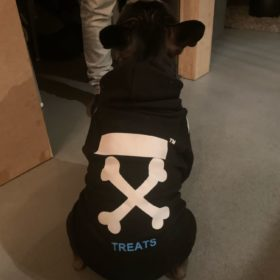 Streetwearowa bluza dla psa WOOF czarna photo review