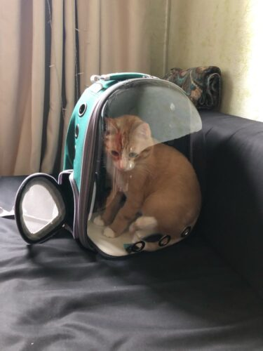 Plecak astronauta z kapsułą APOLLO photo review