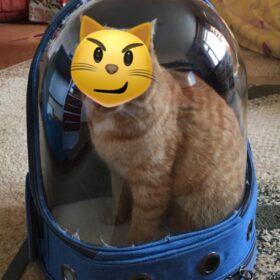 Plecak astronauta z saszetką ARMSTRONG photo review