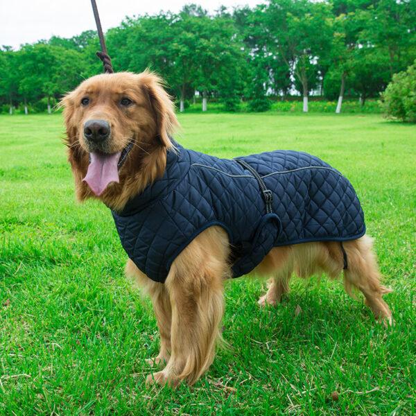 Pikowana granatowa kurtka dla dużego psa BRUNO na psie przodem