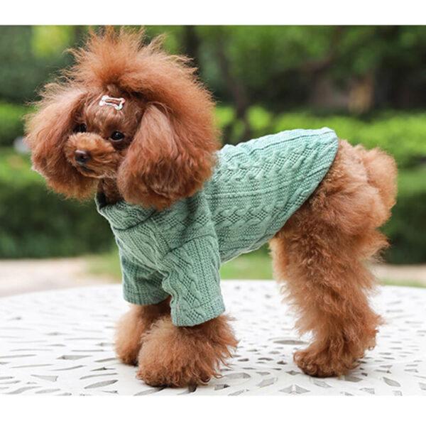 Sweter-dla-psa-Gianni-miętowy-na-psie-bokiem