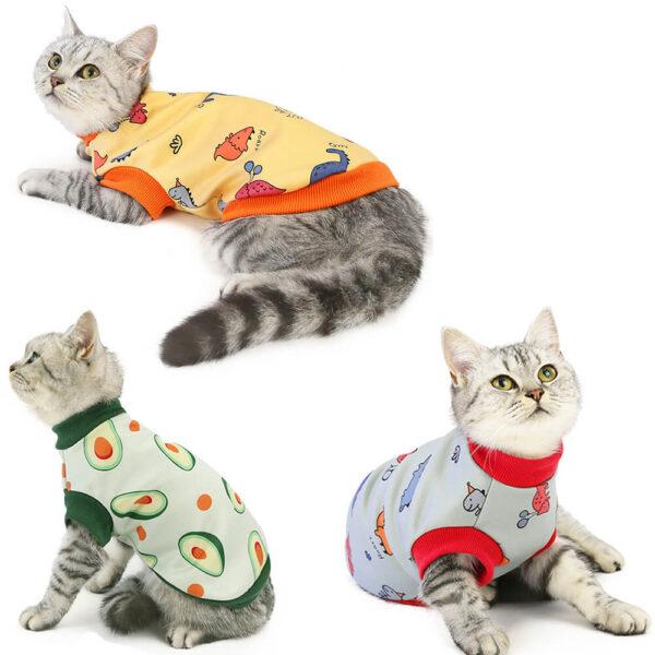 Bluza Dla Kota Happy Cat Koty Miniatura