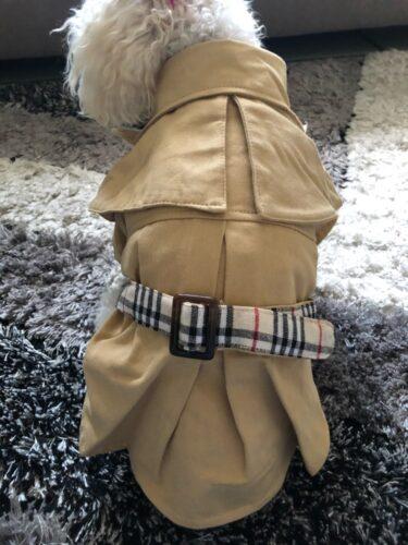 Płaszczyk dla psa Prochowiec COLLIN photo review