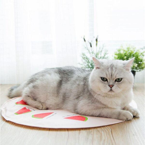 Mata chłodząca dla psa lub kota Arbuz kot