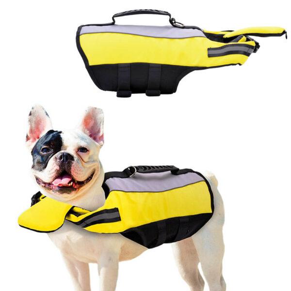 Kapok dla psa Miami na buldogu francuskim na białym tle