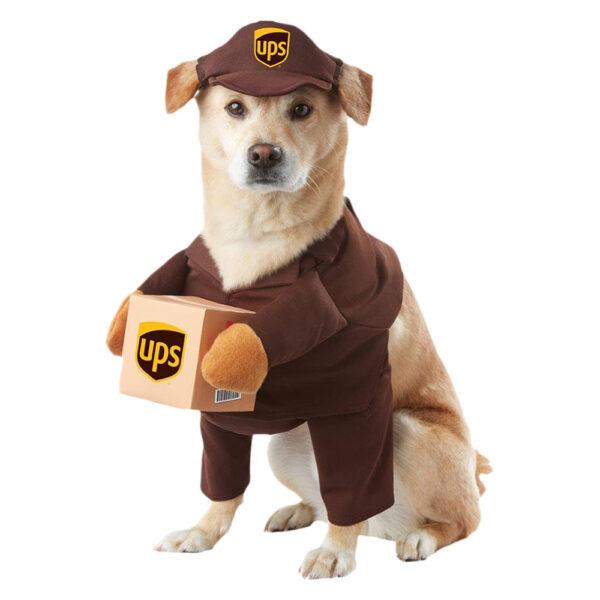 Kostium dla psa Kurier Express miniaturka