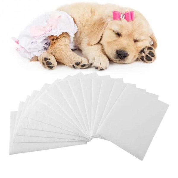 Wkład do majtek dla psa Puppers na Białym Tle
