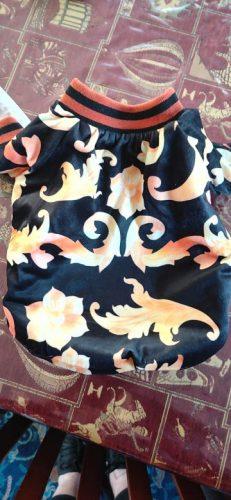 Aksamitna bomberka bluza dla psa PAWSACE photo review